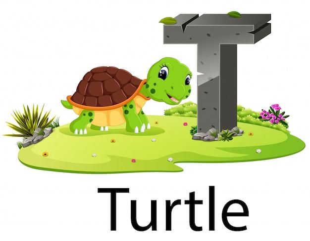 Zoológico alfabeto animal t para tartaruga com a boa animação