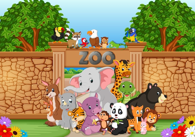 Zoológico e animais em uma bela natureza