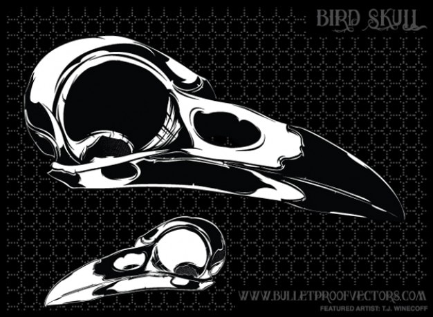 049 cranio free bird