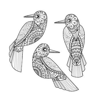3 pagine da colorare di uccelli per adulti