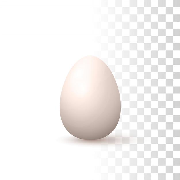 3d uovo naturale