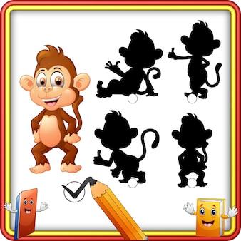 Abbinamento ombra del gioco scimmia