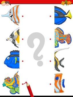 Abbinare l'attività del mezzo pesce