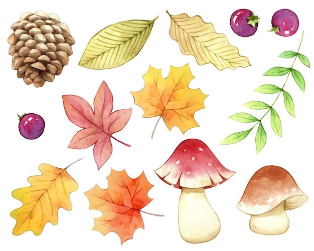 Accessorio autunno natura acquerello