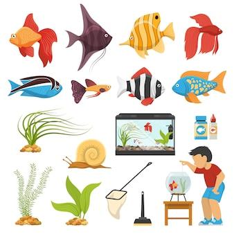 Acquario acquario set di pesci