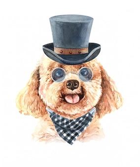 Acquerello barboncino con occhiali da sole scozzese sciarpa e cappello a cilindro.