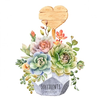 Acquerello cactus e piante grasse in vaso di fiori geometrici
