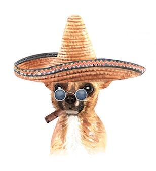 Acquerello chihuahua con occhiali da sole cappello messicano e sigaro.