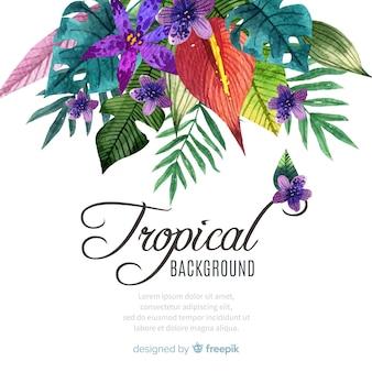 Acquerello colorato sfondo tropicale