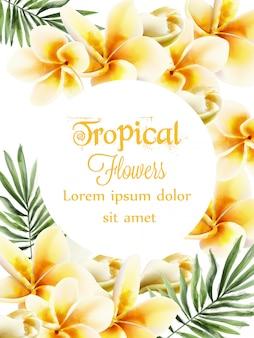 Acquerello di fiori gialli plumeria