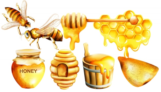 Acquerello di miele con vaso, mestolo, api, nido d'ape, casa e secchio