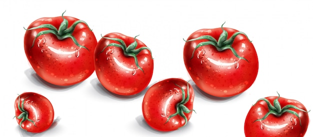 Acquerello di pomodori. pomodori freschi con gocce d'acqua.
