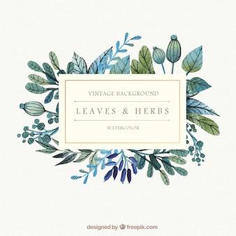 Acquerello foglie ed erbe sfondo