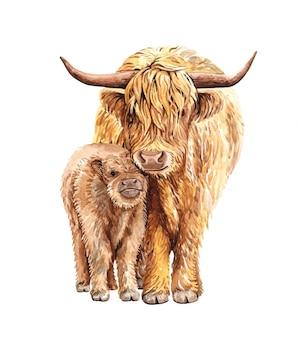 Acquerello mamma e bambino yak