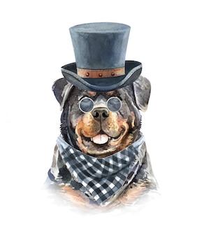 Acquerello rottweiler con occhiali da sole e cappello a cilindro.