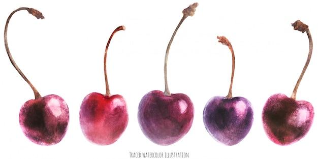 Acquerello set di ciliegie fresche