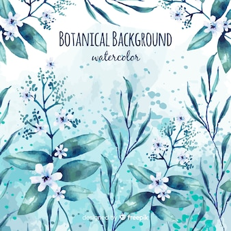 Acquerello sfondo botanico