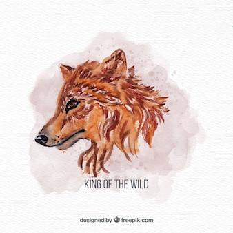 Acquerello volto laterale del lupo