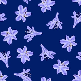 Agapanthus viola blu su fondo blu navy