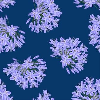 Agapanthus viola blu su sfondo blu indaco