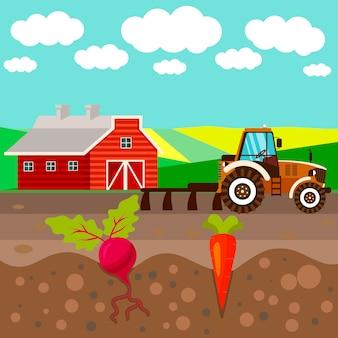 Agricoltura illustrazione vettoriale piatto