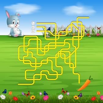Aiuta il coniglio a trovare la carota