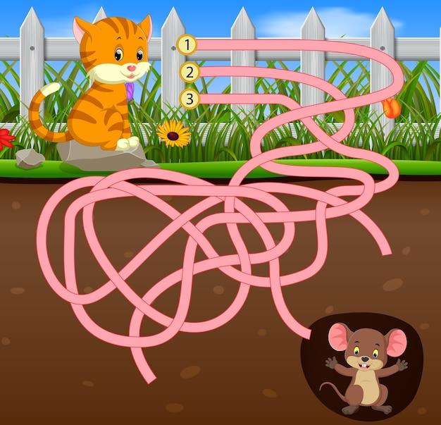 Aiuta il gatto a trovare il topo