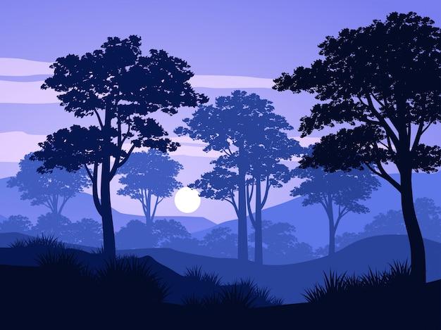 Alba nel paesaggio della natura della foresta