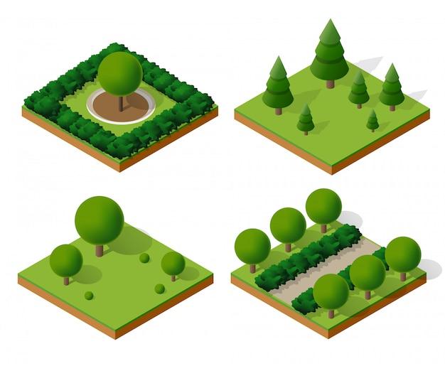 Alberi forestali in campeggio