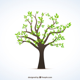 Albero con foglie verdi
