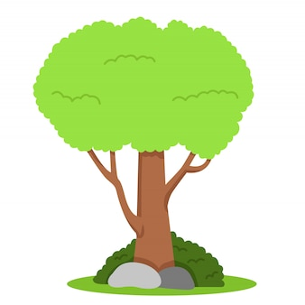 Albero sull'erba