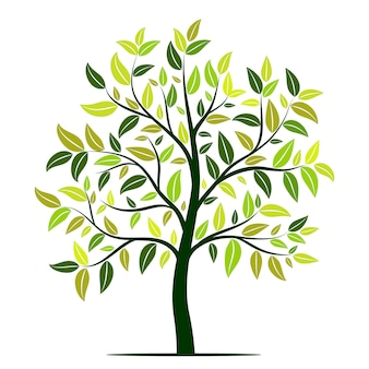 Albero verde con foglie vettoriale