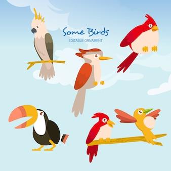 Alcuni uccelli ace