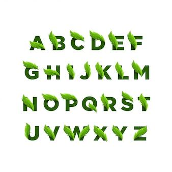 Alfabeto di foglie verdi