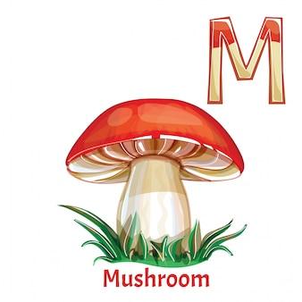 Alfabeto, lettera m di funghi