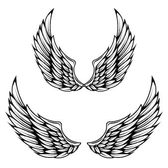 Ali d'annata su fondo bianco. elementi per logo, etichetta, emblema, segno, marchio.