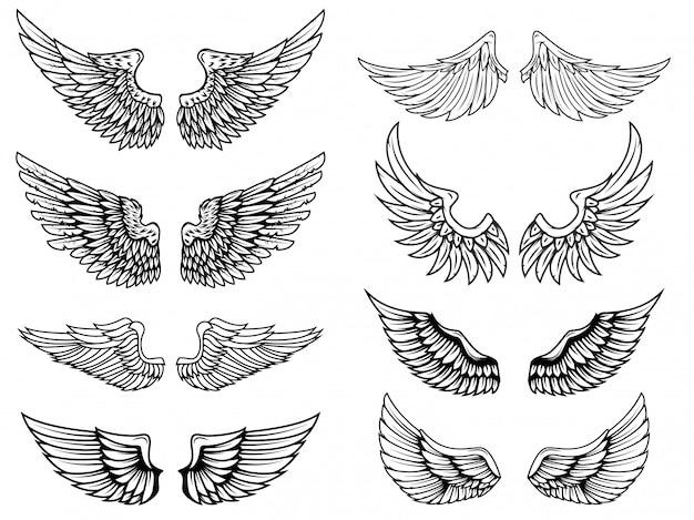 Ali su sfondo bianco. elementi per logo, etichetta, emblema, segno, distintivo. illustrazione