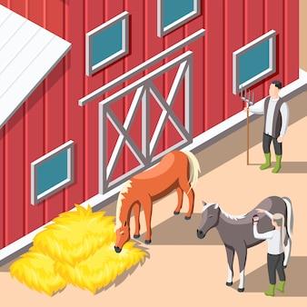 Allevamento di cavalli sfondo isometrico