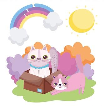Allungando il gatto e gli altri nel box box all'esterno degli animali domestici