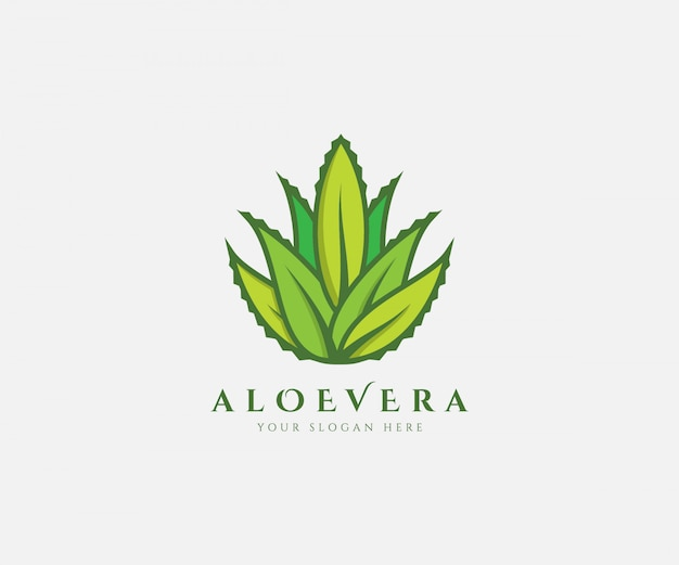 Aloe vera fresh logo green leaf