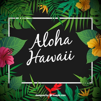 Aloha hawaii sfondo
