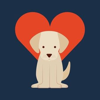 Amo la vita da cane