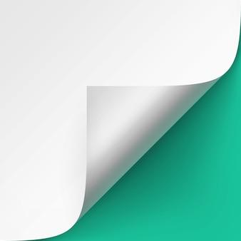 Angolo arricciato di carta bianca con ombra close up su sfondo verde menta chiaro