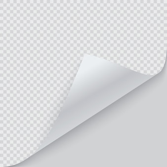 Angolo di carta arricciato con ombra