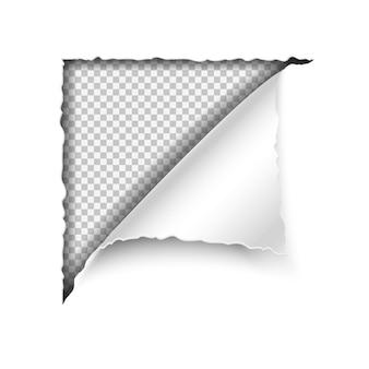 Angolo strappato di carta vettoriale