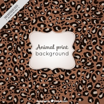 Animal background di leopardo