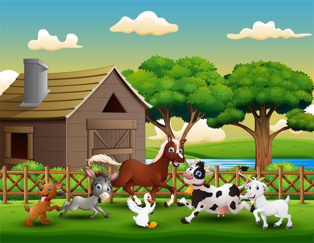 Animale da fattoria felice che gioca fuori dalla gabbia