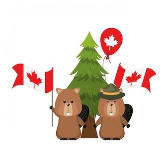 Animale della foresta del castoro del canada