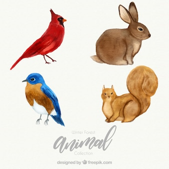 Animale foresta invernale