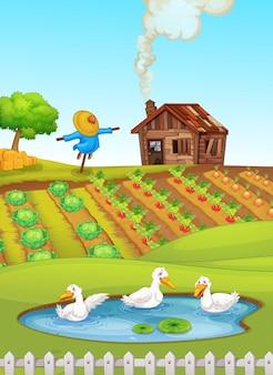 Animale nella fattoria della natura